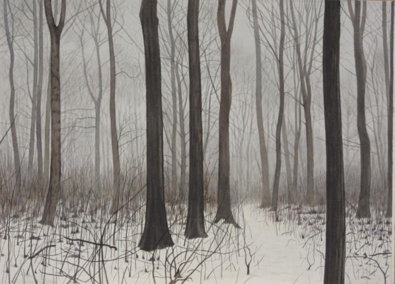 A snowy wood 36 x 26 £500