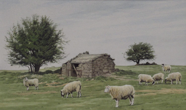 Moorland hut 26 x 15.5 £400
