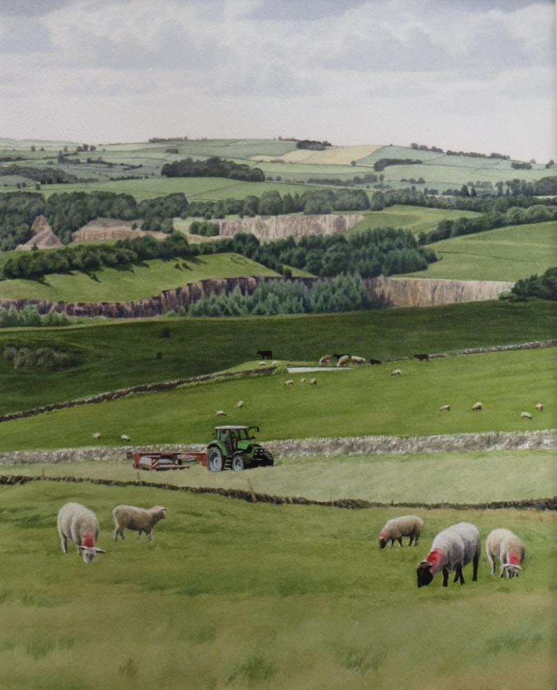Mowing on Ballidon Moor
