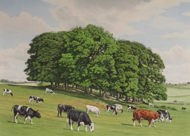 The Hereford's harem 36 x 26 £550