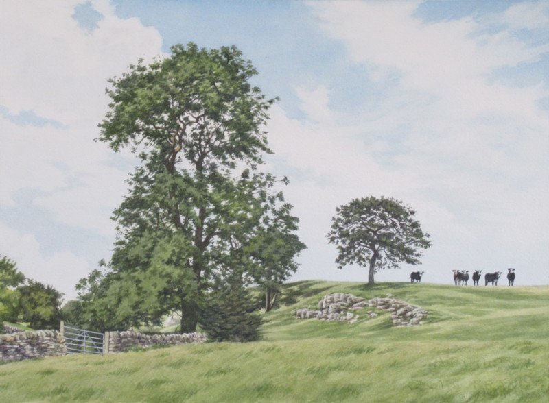 Watching cattle 36 x 26 £600